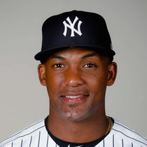 Miguel Andujar goes deep in loss to the Rays photo